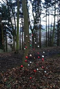 tree9